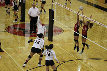 Volleyball Preview 2015