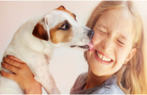 Six Benefits of Having a Dog